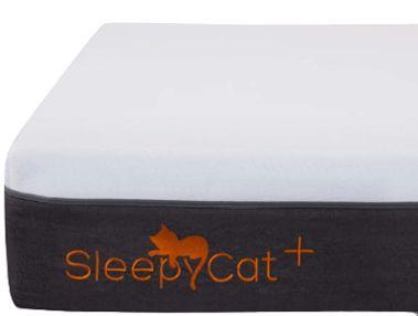SleepyCat Plus 8-inch Orthopaedic Memory Foam Mattress