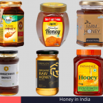 Best Honey in India