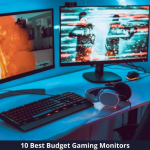 10 Best Budget Gaming Monitors in 2021